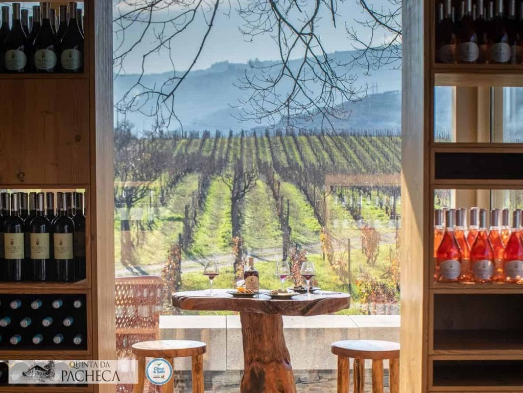 bike-touring-douro-wine-country-quinta-pacheca